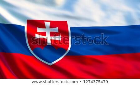 Szövet textúra zászló Szlovákia kék íj Stock fotó © maxmitzu