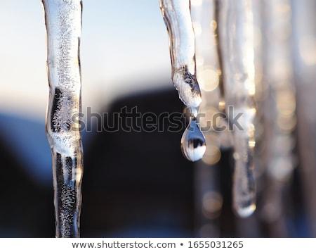 Pezsgő jégcsap naplemente gyönyörű természet hó Stock fotó © Mikko