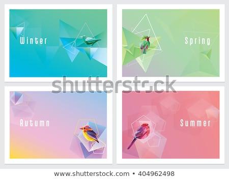 Hiver oiseaux vecteur fichier Photo stock © kidesign