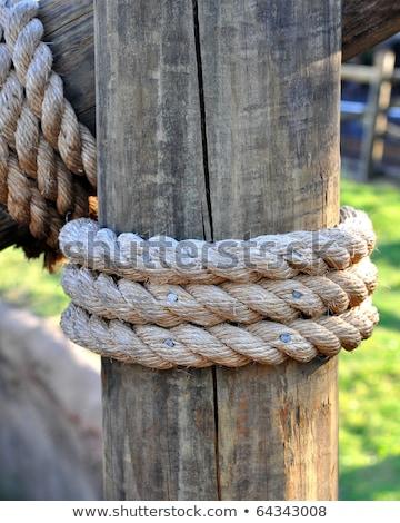the hawser on the wooden post stock photo © hanusst