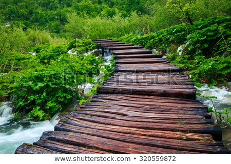 idyllic footpath Stock photo © prill