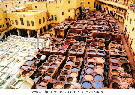 Tannery in Fez with colors Stock photo © Hofmeester