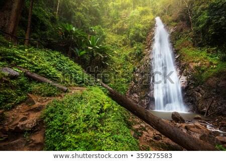 waterfall in chiang rai province thailand stock photo © scenery1