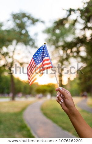 Crepúsculo bandeira americana nublado céu nota Foto stock © reicaden