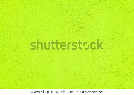 Verde concreto parede harmônico padrão velho Foto stock © meinzahn