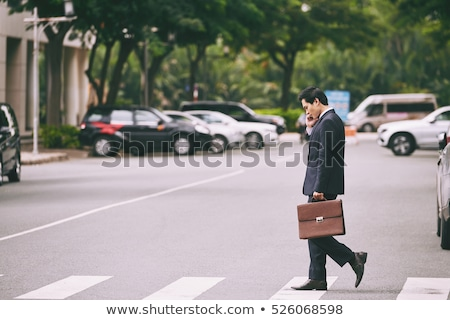 Businessman with briefcase on the road Stock photo © cherezoff
