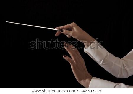Weiblichen Orchester halten Musik Hand Stock foto © AndreyPopov
