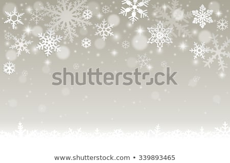 Silver snow flake pattern design Stock photo © wavebreak_media