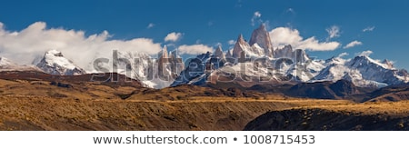 panorama of the southern andes stock photo © wildnerdpix