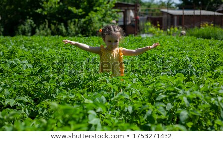 Girl in green holding her plait Stock photo © Paha_L