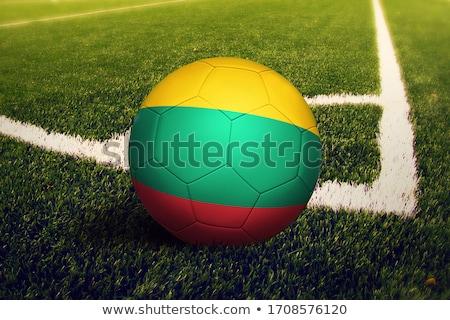 Futball zászló Litvánia 3d illusztráció futball sport Stock fotó © MikhailMishchenko
