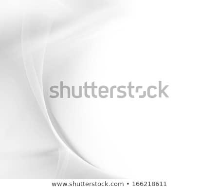 шелковые аннотация черно белые корпоративного вектора графического дизайна Сток-фото © saicle
