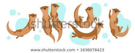 An otter Stock photo © bluering
