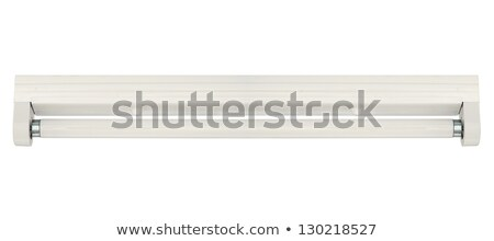 Fluorescent lamp with batten fitting Stock photo © ozaiachin
