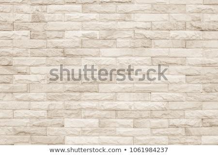 モザイク 壁 石の壁 テクスチャ 抽象的な ストックフォト © drobacphoto