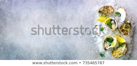 льда · пластина · баннер · реалистичный · снега · прозрачный - Сток-фото © BoogieMan