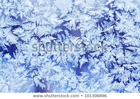 Beautiful Frosty Natural Pattern On Window Glass Foto d'archivio © Sailorr