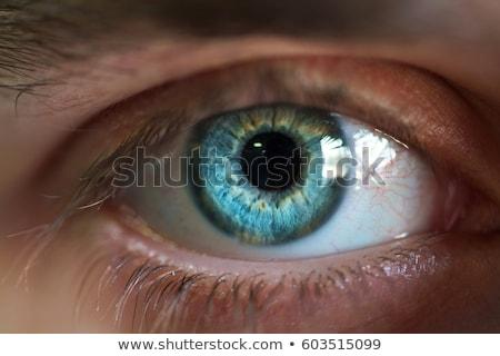 Stock fotó: Gyönyörű · férfi · szem · közelkép · kék · üzlet