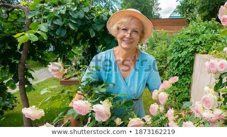 женщину Hat позируют цветок Буш Сток-фото © deandrobot