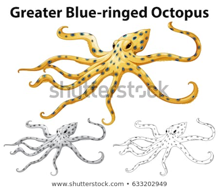 Doodle animal for greater blue-ringed octopus Stock photo © bluering