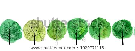 Arbre couleur pour aquarelle image blanche bois résumé Photo stock © jara3000