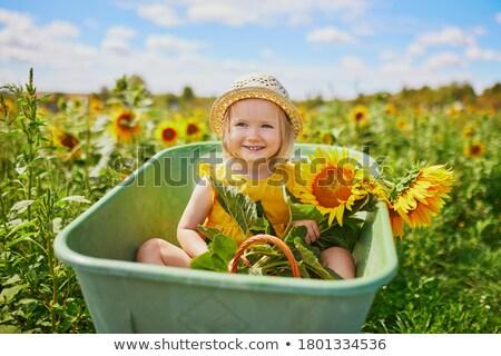 Kız el arabası çiftlik portre tarım oturma Stok fotoğraf © IS2
