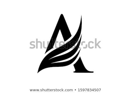 алфавит письме крыло шаблон вектора Сток-фото © vector1st