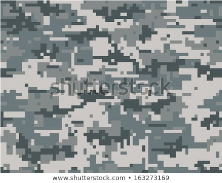 Naadloos digitale camouflage mode patroon vector Stockfoto © ratkom