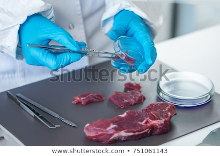 vrouwelijke · slager · vlees · fabriek · portret · business - stockfoto © wavebreak_media