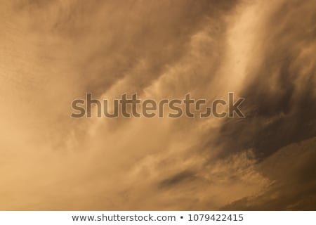 Wind in the desert Stock photo © Givaga