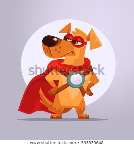 Cartoon · собака · иллюстрация · смешные · животного - Сток-фото © bennerdesign