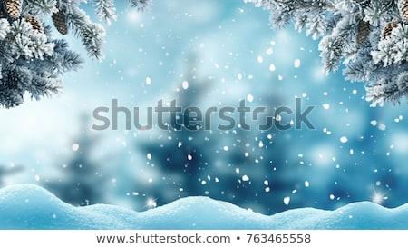 blackboard and winter snow Stock photo © romvo