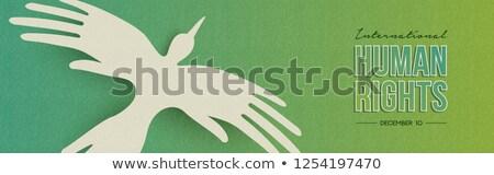 Direitos humanos teia bandeira pessoas mão pássaro Foto stock © cienpies