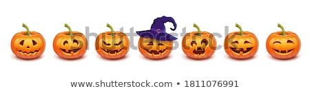 Pumpkin Vegetable and Hat Isolated Set Vector Stock photo © robuart