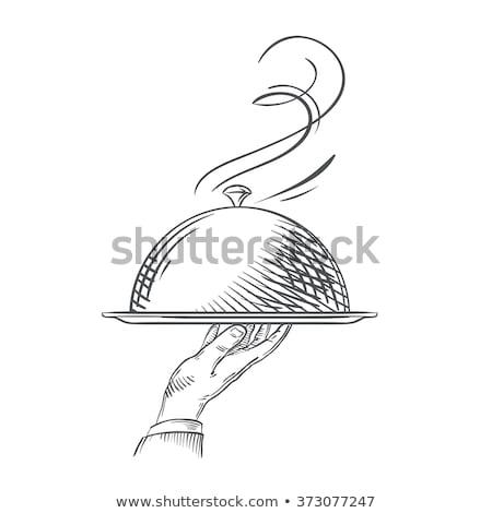 Hand holding server hand drawn outline doodle icon. Stock photo © RAStudio