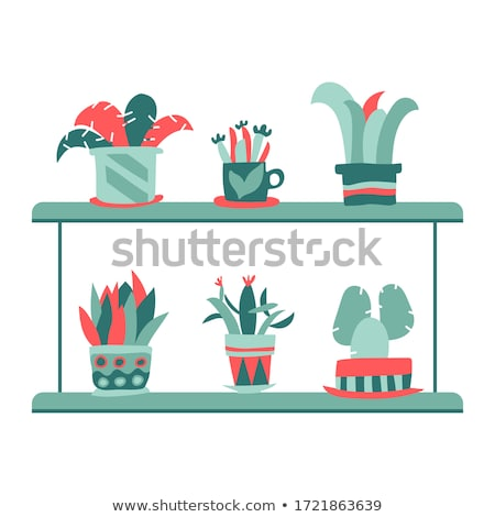 Floral Green Home Decorative Houseplant Set Vector Stock photo © pikepicture