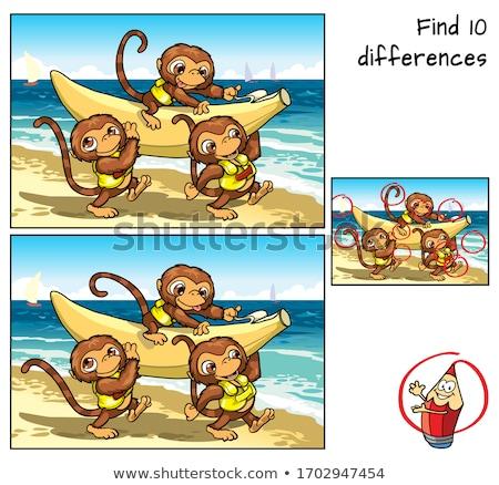Miejscu różnica gry dzieci dorośli zadanie Zdjęcia stock © Olena