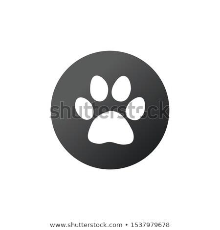 Pata impresión círculo animales huella icono Foto stock © kyryloff