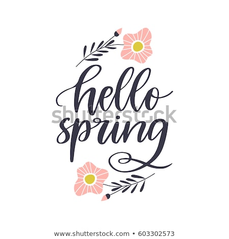 Hello spring text. Vector lettering phrase for poster, greeting card, postcard. Easter concept Stock photo © masay256