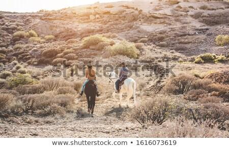 верхом иллюстрация закат силуэта походов Сток-фото © adrenalina