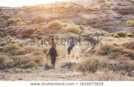 horseback excursion Stock photo © adrenalina