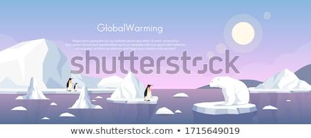 Küresel isınma kutup ayısı parça buzdağı 3d render örnek Stok fotoğraf © orla