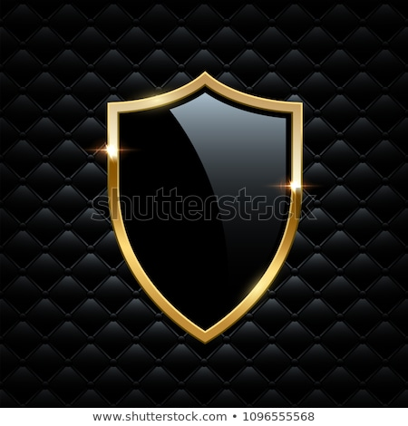 gold shield symbol of safety and protection Stock photo © LoopAll