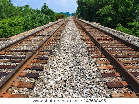 two sets of train tracks stock photo © bobkeenan