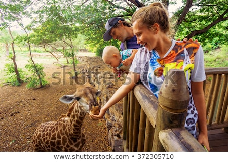 Family trip to the wildlife park Stock photo © pumujcl