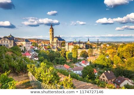 панорамный · мнение · Прага · облачный · город · зданий - Сток-фото © stevanovicigor