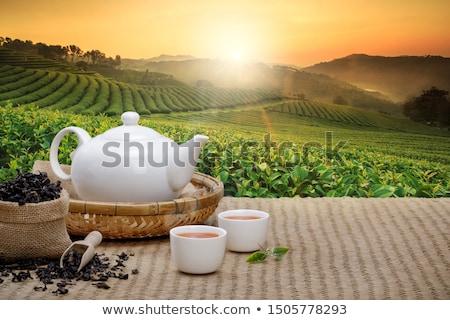 çay çay fincanı demlik beyaz mavi taş Stok fotoğraf © compuinfoto