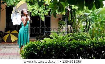 Woman in soaking wet dress walking Stock photo © vetdoctor