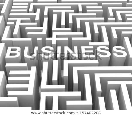 központ · labirintus · üzletember · keresés · gól · elveszett - stock fotó © stuartmiles