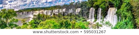 The fantastic Iguazu falls Stock photo © elxeneize